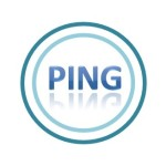 「WordPress ping Optimizer」の設定の方法